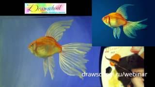 Как нарисовать золотую рыбку красками (акрил, гуашь)(Как нарисовать золотую рыбку красками? В этом видео-уроке автор расскажет и покажет простой способ нарисов..., 2016-03-09T08:32:19.000Z)