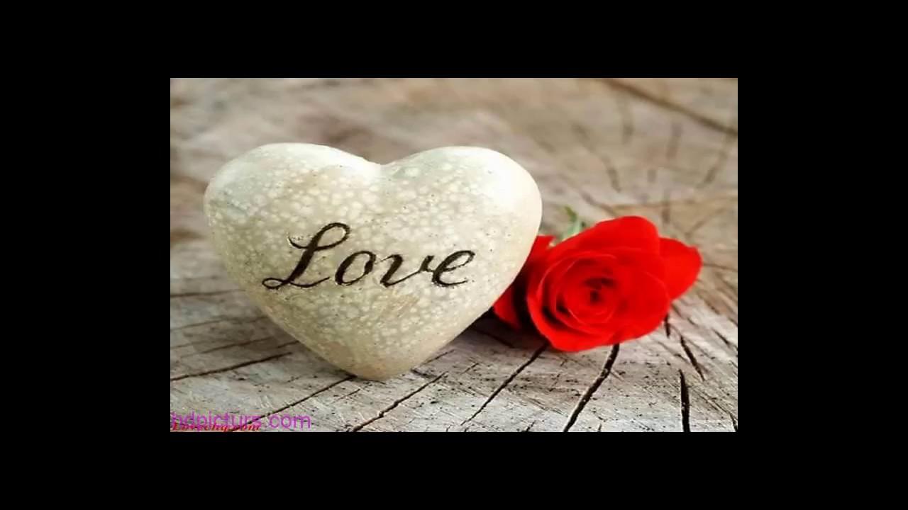 احبك لا تقولي كيف!!! احبك.