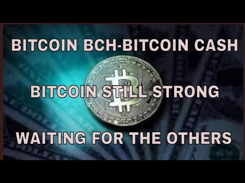 BITCOIN BCH BITCOIN CASH  Daily Price Analysis 2