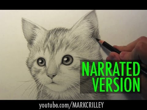 Baby Cat Cute Live Wallpaper How To Draw A Kitten Narrated Step By Step Youtube