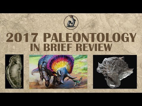 2017 Paleontology in Brief Review