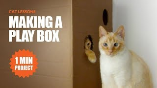 How to Make a Quick Cat Play Box