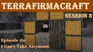Lets Play - TerraFirmaCraft - Session 3 - 120 - I Can't Take Anymore