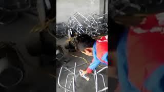 video pham van hung