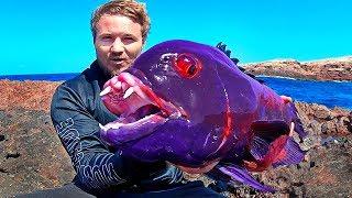 ВОТ ЭТО УЛЁТНАЯ РЫБАЛКА 2020 РЫБАКИ ЭТОГО НЕ ЗАБУДУТ 100 Рыбалка видео приколы