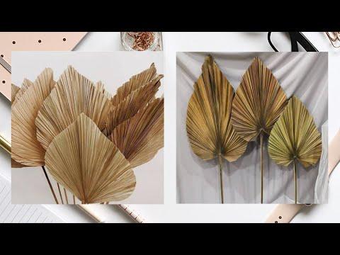 room decor ideas cara membuat daun palem kering dari