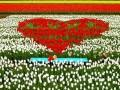 мелодия любви... Наиль Табанаков - алан (поляна)