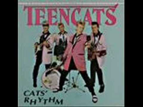Teencats - Hey babe