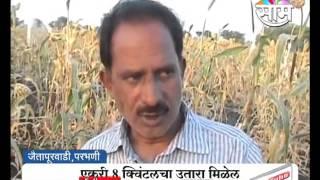 Agrowon: Parbhani based Shrikant Chowdhary