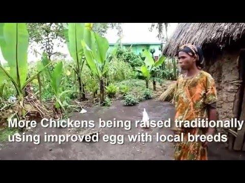 Climate Smart Agriculture Practice -SOS Sahel Ethiopia