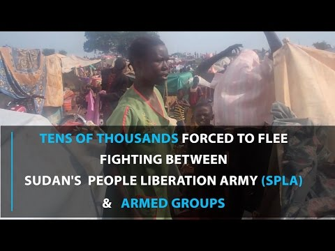12,000 seek protection at UNMISS