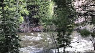 430 Quail Ridge River Frontage #1