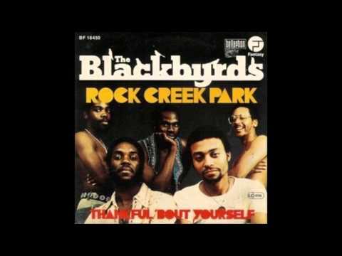 Blackbirds  Rock Creek Park  JOHN MORALES M&M MIX
