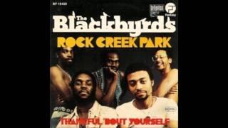Blackbirds - Rock Creek Park - JOHN MORALES M&M MIX