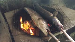 Grilled snakehead fish roll with rice paper, ca lóc nướng cuốn bánh tráng