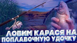 Рыбалка на Карася Рыбачим в двух метрах от берега Отличный клёв Майские праздники