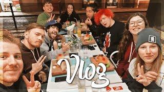 Süße Gäste auf der INSEL! 🌴 Vlog 📷