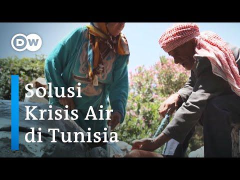 Ancaman Bencana Kekeringan di Tunisia Teratasi Lewat Manajemen Air