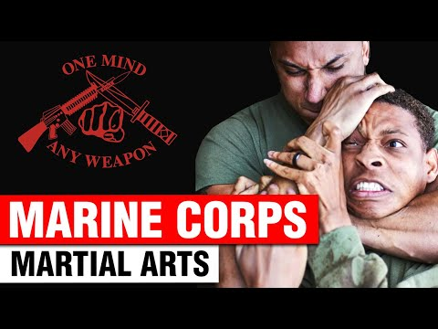Marine Corps Martial Arts Program Intro | ART OF ONE DOJO