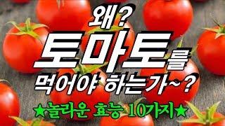 왜~? 토마토를 먹어야만 하는가 ~? 토마토의 깜짝 놀랄 효능 10가지~~!!