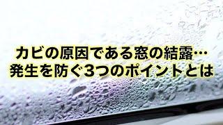 【お天気雑学】カビの原因である窓の結露… 発生を防ぐ3つのポイントとは