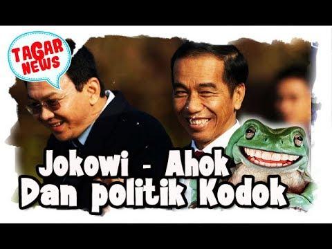Jokowi, Ahok, dan Politik Kodok
