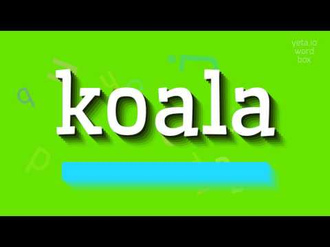 "How to say ""koala""! (High Quality Voices)"