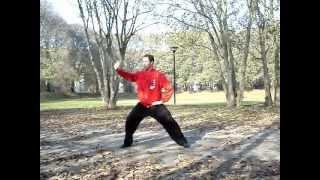Taijiquan stile Chen lezione 2 - esercizi di rotazione a un braccio