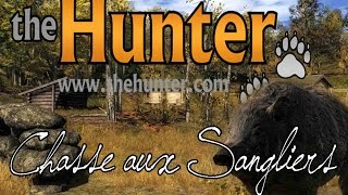 Chasse Au Sanglier - The Hunter