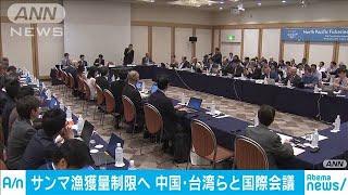 """""""サンマの漁獲量制限を""""日本、国際会議で提案へ(19/07/16)"""