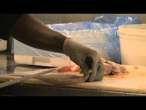 The New Fulton Fish Market