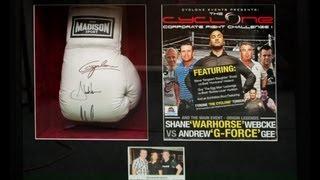 Shadowbox Picture Framing Brisbane Boxing Gloves Framed Part 2