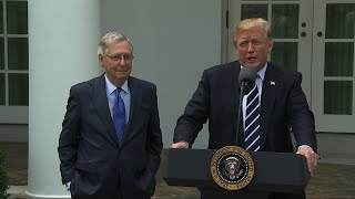 Trump, McConnell: Relationship is Outstanding