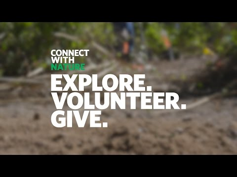 Connect with Nature 2016: Clark County Wetlands Park