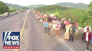 migrant caravan news