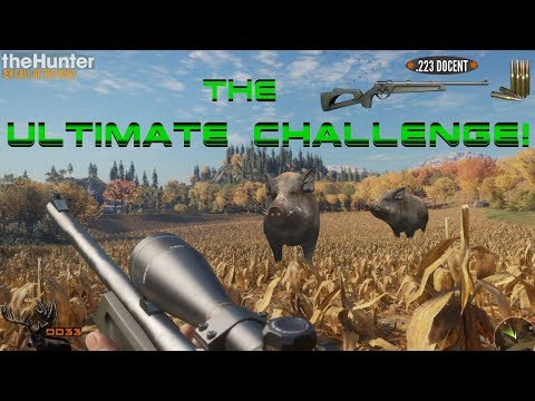 The ULTIMATE Wild Boar Diamond CHALLENGE!! CALL OF THE WILD 2018