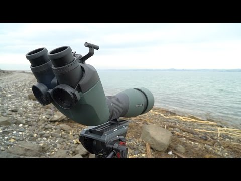 Swarovski BTX  - New Binocular Spotting Scope - Austria Tour February 2017 © Biotope