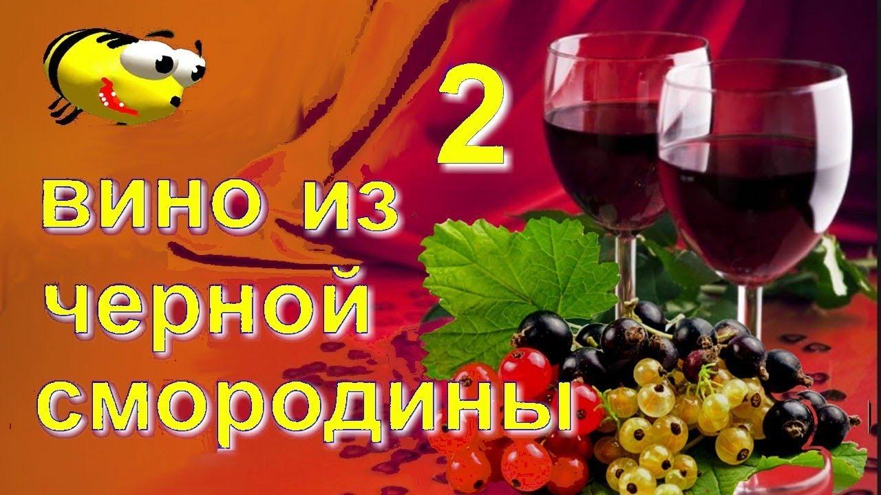 Домашнее вино из черной смородины (часть 2)