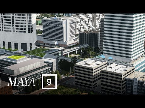 The Hotel Complex - Cities Skylines: Maya [EP 9] |