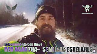 Entrenamiento Con Nieve Red Agartha - Semillas Estelares