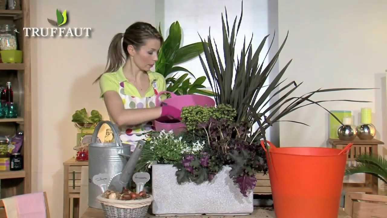 La plantation en jardini re jardinerie truffaut tv youtube - Truffaut jardiniere ...