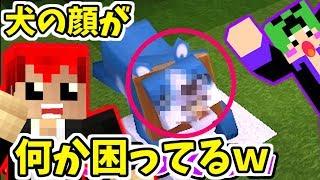【200円マイクラ】ワンちゃんがペットになったら顔が…w【Mini World: Block Art実況】2