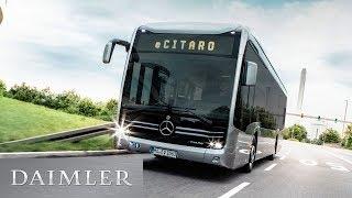 DaimlerBuses: The Mercedes-BenzeCitaro Team