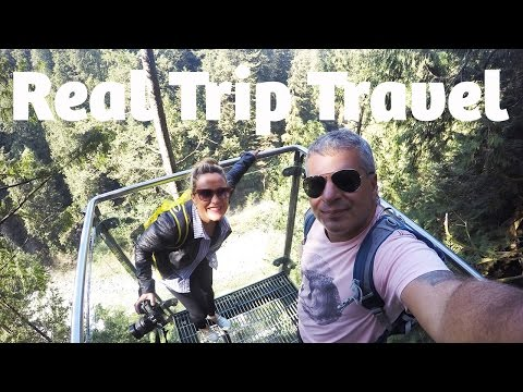Real Trip Travel