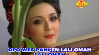 Video Bojo Lali omah maghdalena mpg download MP3, 3GP, MP4, WEBM, AVI, FLV Oktober 2017