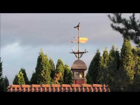 Nikolajevo aukštaskraidžiai Lietuvoje-29-Ukrainian Skycutters in Lithuania.