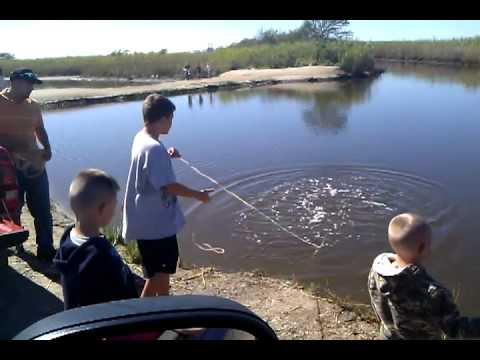 Gage catching shrimp with castnet (1st time) Travel Video