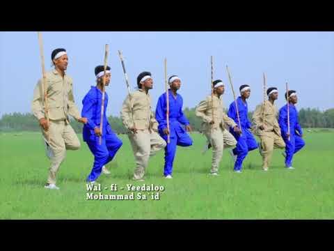 Mahammad Sa'id: Injifannoon Xiqqoo Hin Qabdu ** NEW 2018 Oromo Music