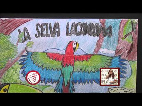 Premios Concurso Que Viva La Selva Lacandona Youtube