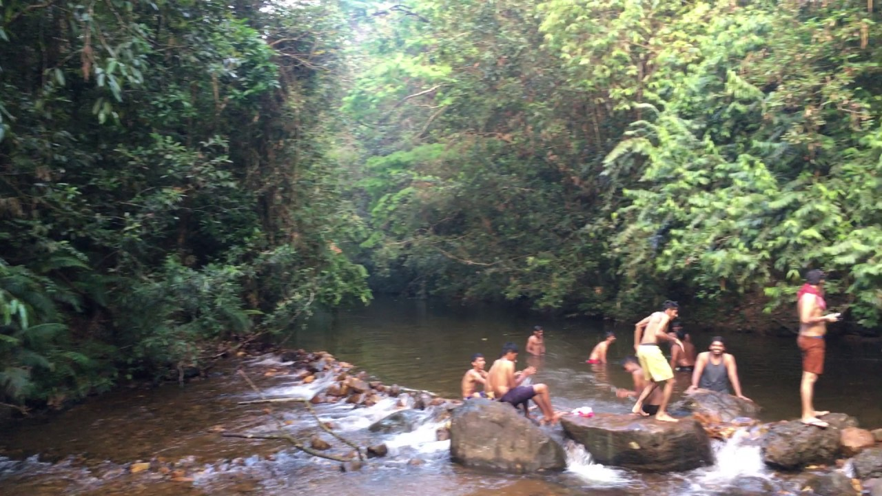 kanneliya rain forest Kanneliya rain forest many travelers come and travel around hot tourism spots in sri lanka and miss awesome spots that cannot compare to any other one su.